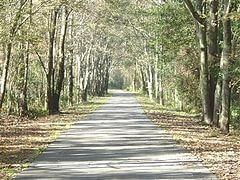 Baldwin Rail Trail